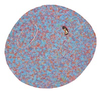 <p>Howardena Pindell, <em>Autobiography: Africa (Red Frog II)</em>, 1986. Garth Greenan Gallery. Photo: courtesy the artist and Garth Greenan Gallery, New York.</p>