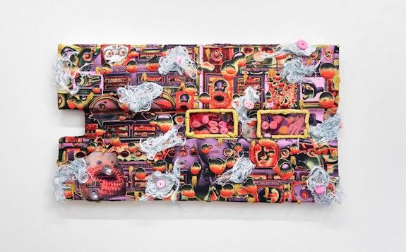 Kari Cholnoky, <em>Floaters/Flashes</em>, 2018. Faux fur, acrylic, collage, epoxy putty, plexiglass, urethane, 41 x 74 x 6 inches. Courtesy Safe Gallery.