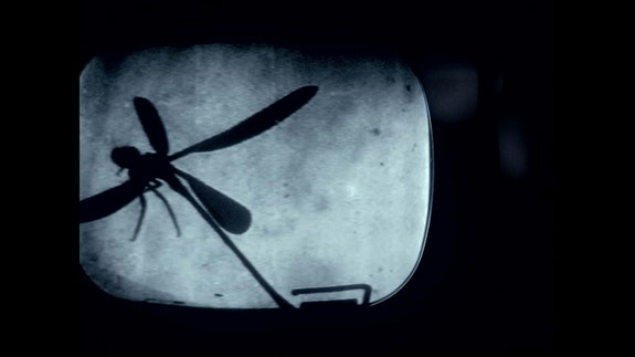 <em>PROTOTYPE</em>. Courtesy of Grasshopper Film.