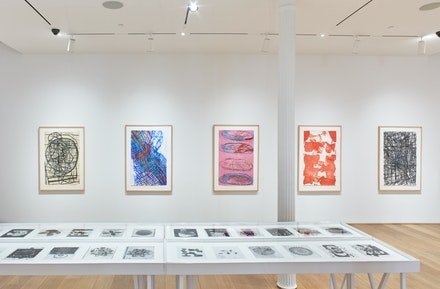 Installation view of <em>Terry Winters: Facts and Fictions</em>. The Drawing Center, New York, 2018. Photo: Martin Parsekian.