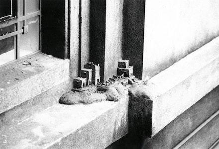 <p>Charles Simonds, <em>Dwelling</em>, Dublin, 1980.</p>