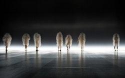 <p>Sasha Waltz&rsquo;s <em>Kreatur. </em>Photo:&nbsp;Sebastian Bolesch.</p>