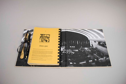 <p>Images of the artist book designed and produced by Tammy Nguyen of Passenger Pigeon Press in conjunction with The Color Curtain Project dinner, September 2018.</p>