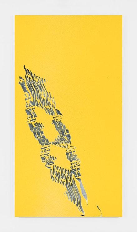 Tauba Auerbach, <em>Grain - Peano Neume</em>, 2018. Acrylic on canvas, 90 x 48 inches. &copy; Tauba Auerbach. Courtesy Paula Cooper Gallery, New York. Photo: Steven Probert.