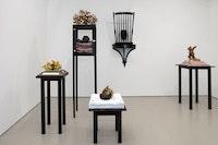 Nick Cave, <em>If a Tree Falls</em>, 2018, installation view, Jack Shainman, New York. Courtesy Jack Shainman.