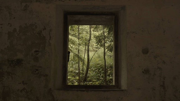 Greetings From Forests (Lep pozdrav iz svobodnih gozdov), Ian Soroka, 2018 / Image courtesy of the filmmaker