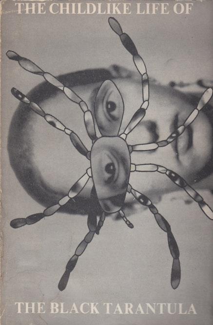 <p>Book cover by Jill Kroesen, <em>The Childlike Life of the Black Tarantula</em>, Viper's Tongue Books, 1975.</p>
