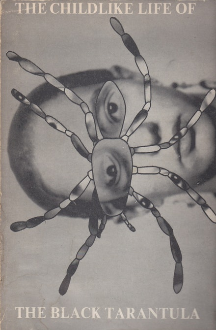 <p>Book cover by Jill Kroesen, <em>The Childlike Life of the Black Tarantula</em>, Viper's Tongue Books, 1975.</p>