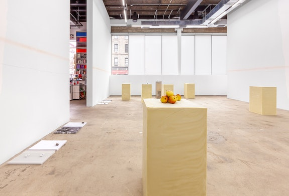 Installation view, <em>Cally Spooner:</em> <em>SWEAT SHAME ETC.</em>, 2018-2019, Swiss Institute, New York. Courtesy Swiss Institute.