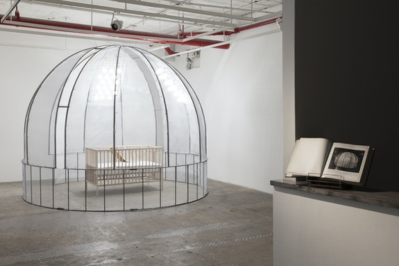 Installation view: <em>Gabo Camnitzer and Llu&iacute;s Alexandre Casanovas Blanco: Aesthetic Behavior; Developmental Sequences</em>, Nurture Art, Brooklyn, 2019. Courtesy Nurture Art. Photo: Gustavo Murillo Fern&aacute;ndez-Vald&eacute;s