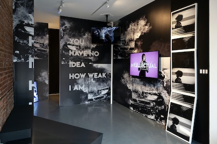 <p>Installation view: <em>Michelle Handelman:LOVER HATER CUNTY INTELLECTUAL</em>, signs and symbols, New York, 2019. Courtesy signs and symbols, New York.</p>