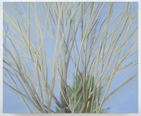 "Sylvia Plimack Mangold, ""Winter Maple,"" (2007). Oil on linen. 20 x 24 in. Photo: Jason Mandella."
