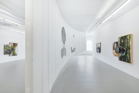 Installation view: <em>Todd Gray: Cartesian Gris Gris</em>, David Lewis, New York, 2019. Courtesy the artist and David Lewis, New York.