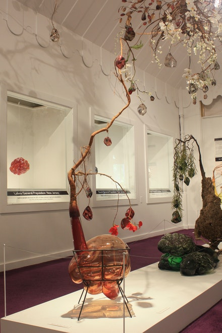 Jesse Krimes, <em>Strange Roots</em> (installation view). Courtesy WheatonArts.