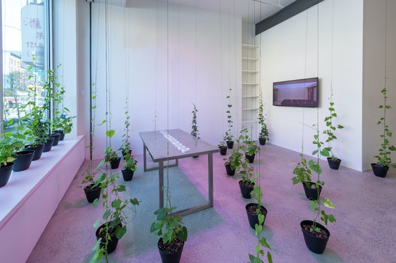 Installation view: <em>Heather Dewey-Hagborg: At the Temperature of My Body,</em> Fridman Gallery, New York, 2019. Courtesy Fridman Gallery.