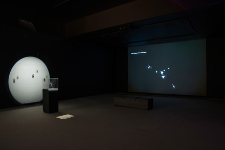 Installation view: <em>Morehshin Allahyari,</em> <em>She Who Sees The Unknown: Huma</em>, MacKenzie Gallery, Regina, 2019. Installation with 3D printed black resin sculpture, clear resin talismans, and HD Video, 2016. Photo: Don Hall.