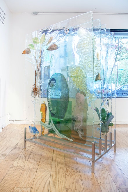 Heidi Norton, <em>The Museum Archive (dedicated to Edward Steichen's Delphiniums, MOMA 1936), Version 2</em>, 2019. Glass, resin, plants, beam splitter glass, photo gels, photographic prints and film. Courtesy Elijah Wheat Showroom, New York.