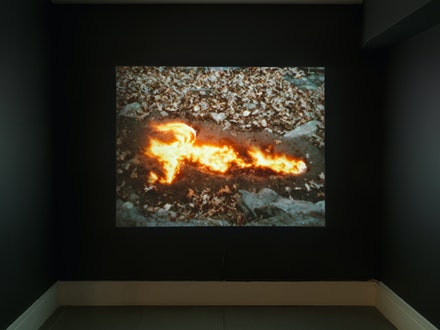 Ana Mendieta, <em>Alma, Silueta en Fuego</em>, 1975. Photo by Object Studies and courtesy of Franklin Street Works.