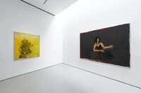 Installation view: Susan Rothenberg, Sperone Westwater, New York, 2020. Photo: Robert Vinas, Jr./Sperone Westwater, New York.