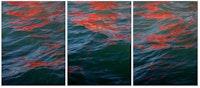 Melissa McGill, <em>Riflessi (Red Regatta - September 1, 2019)</em>, 2019. Digital pigment print (part of a triptych). Courtesy TOTAH.