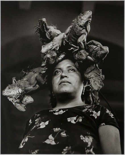 Graciela Iturbide, <em>Nuestra Señora de las Iguanas (Our Lady of the Iguanas), Juchitán</em>, 1979. Gelatin silver print, 10 x 8 inches. Collection of Daniel Greenberg and Susan Steinhauser; © Graciela Iturbide. Courtesy Museum of Fine Arts, Boston.