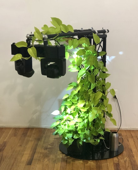 Craig Kalpakjian,  <em>Silent Running</em>, 2019-2020. Dual Moving Head Spotlight, DMX controller, Houseplant, Lighting truss and base, surveillance mirror, watering can, 51 x 50 x 28 inches. Courtesy Kai Matsumiya.