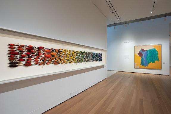 Installation view, <em>James Prosek: Art, Artifact, Artifice</em>, Yale University Art Gallery. Photo: Jessica Smolinski