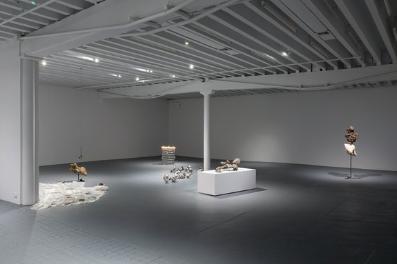 Installation view, <em>Rochelle Goldberg: Psychomania</em>, Miguel Abreu Gallery, New York. Courtesy Miguel Abreu Gallery, New York.