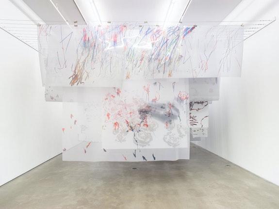 Installation view: Petra Cortright: <em>borderline aurora borealis</em>, Team Gallery, New York, 2020. Courtesy Team Gallery