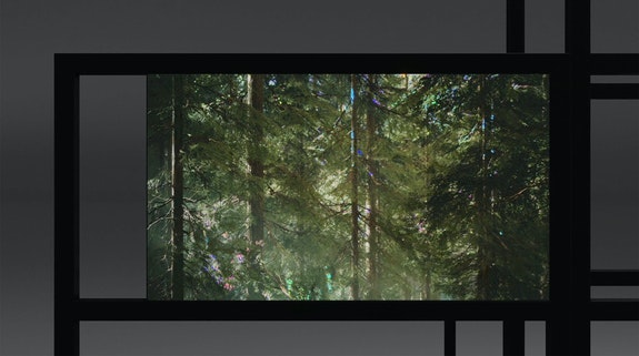 Shi Zheng, <em>Umwelt [sim]</em>, 2020. Video (sound, color), media player, screen or projector. Dimensions variable, landscape orientation, 7 min 13 sec, loop. Courtesy bitforms.