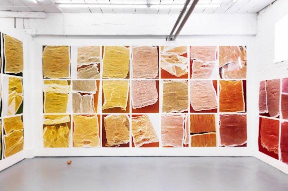 Installation view: <em>Laurie Kang: Her Own Devices</em>, Franz Kaka, Toronto, 2020. Courtesy the artist and Franz Kaka, Toronto.