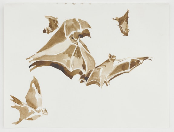 Michael Armitage, <em> Bats</em>, 2019. Ink on paper, 9 1/4 x 12 1/4 inches. © Michael Armitage. Photo © White Cube (Theo Christelis).