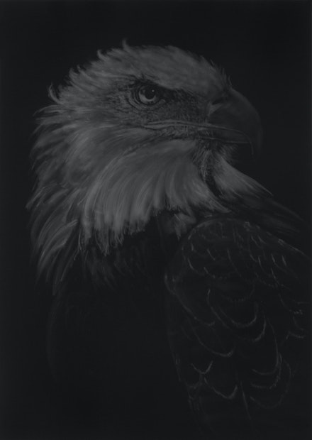 Aleksandar Duravcevic, <em>Empire 29</em>, 2013–17. Graphite on black paper, 40 x 29 inches. Courtesy Totah Gallery, New York.