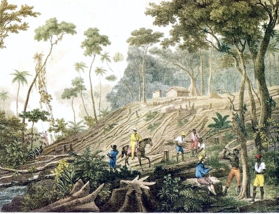 Johann Moritz Rugendas, <em>Cleaning a Forest</em>, c.1820-25.
