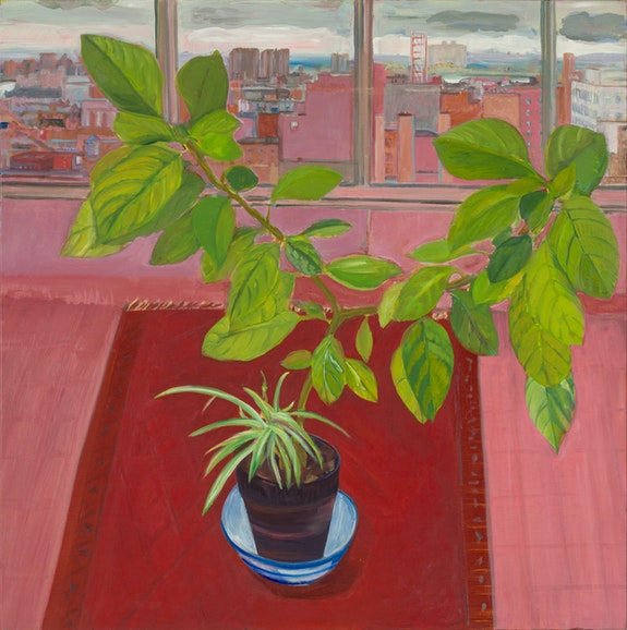 Jane Freilicher, <em>Untitled (Still Life with Large Plant and Cityscape)</em>, c. 1990. Oil on linen, 36 x 36 inches. Courtesy the Estate of Jane Freilicher and Kasmin.