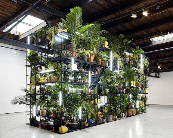 Rashid Johnson, <em>Antoine's Organ</em>, 2016. Black steel, grow lights, plants, wood, shea butter, books, monitors, rugs, piano, 189 x 338 x 126 3/4 inches. © Rashid Johnson. Courtesy the artist and Hauser & Wirth.