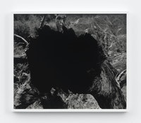 Mark McKnight, <em> Untitled (Tree Void II)</em>, 2021. Gelatin silver print, 20 x 24 inches. Courtesy Klaus Von Nichtssagend Gallery, New York.