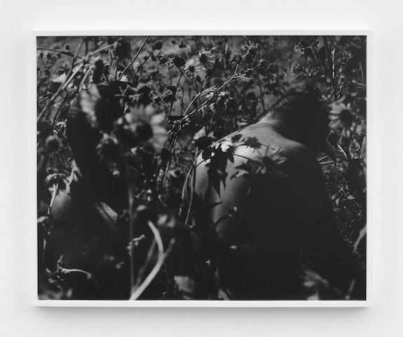 Mark McKnight, <em>Wildflowers</em>, 2021. Gelatin silver print 24 x 30 inches. Courtesy Klaus Von Nichtssagend Gallery, New York.