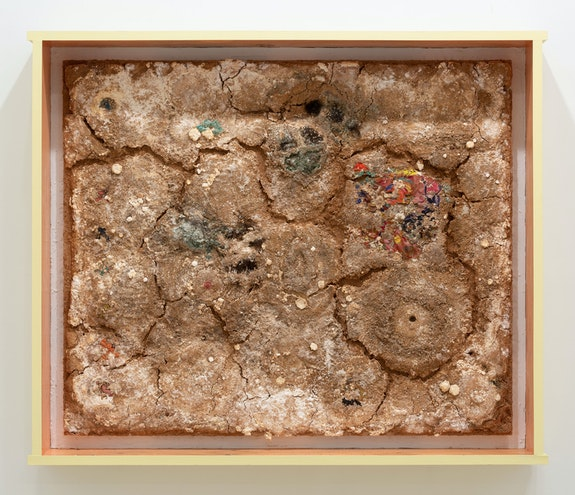 Nour Mobarak, <em>Reproductive Logistics</em>, 2020. Trametes versicolor, apple wood pellets, kraft paper, watercolor, hair, sperm, acrylic, resin, 65 1/2 x 75 x 12 1/2 inches. Courtesy the artist and Miguel Abreu Gallery, New York. Photo: Stephen Faught.