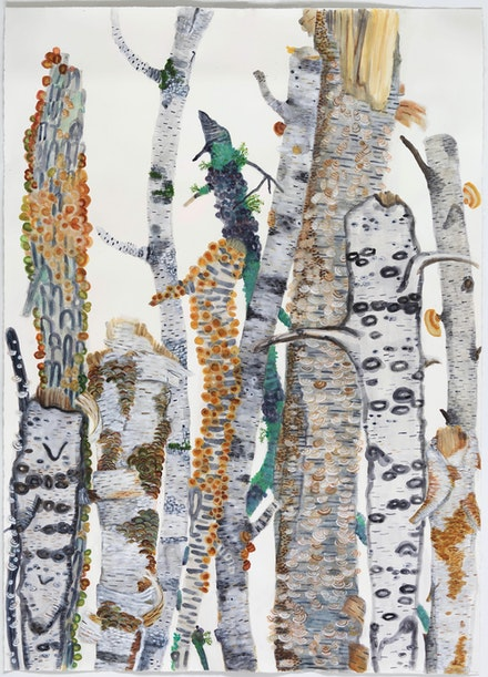 Katie DeGroot,<em> Big Time (The Birches)</em>, 2020. Watercolor on paper, 72 x 52 inches. Courtesy Kathryn Markel Fine Arts.