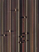 Marco Breuer, detail,