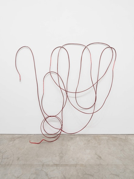 Sheela Gowda, <em>Untitled</em>, 1997. 10 pieces: thread, pigment, needles, dimensions vary (approximately 120 x 300 inches). +91 Foundation (Collection of Shumita and Arani Bose), New York. Courtesy of the Philadelphia Museum of Art. Photo: Joseph Hu, 2020.