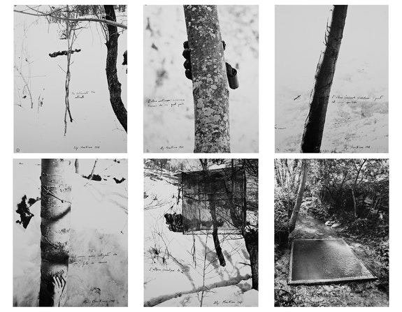 Giuseppe Penone, <em>Alpi Marittime (1-6)</em>, 1968, Set of 6 black and white photographs, each framed, 26 ⅛ x 20 ⅜ in. (66 x 50 cm). Photo © Archivio Penone. Courtesy Marian Goodman Gallery.
