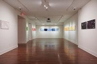 Installation view: <em>William Eric Brown: ColorStatic</em>, The National Arts Club, New York, 2021. Courtesy The National Arts Club/Caleb Miller.