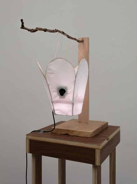 Cici Wu, <em>Foreign Object #2 Umbra and Penumbra (+95 prototype)</em>, 2021. Bamboo wire, paper, glue, metal wire, neopixel led, opencv camera, raspberry pi zero, micro-usb cable, artist's lantern holder and plinth. 48 1/2 × 16 1/4 × 16 1/4 inches. Courtesy 47 Canal. Photo: Joerg Lohse.