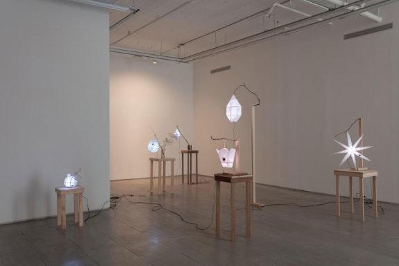 Installation view: <em>Lantern Strike</em>, 47 Canal, New York, 2021. Courtesy 47 Canal. Photo: Joerg Lohse.