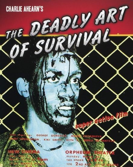 <em>The Deadly Art of Survival </em>movie poster.