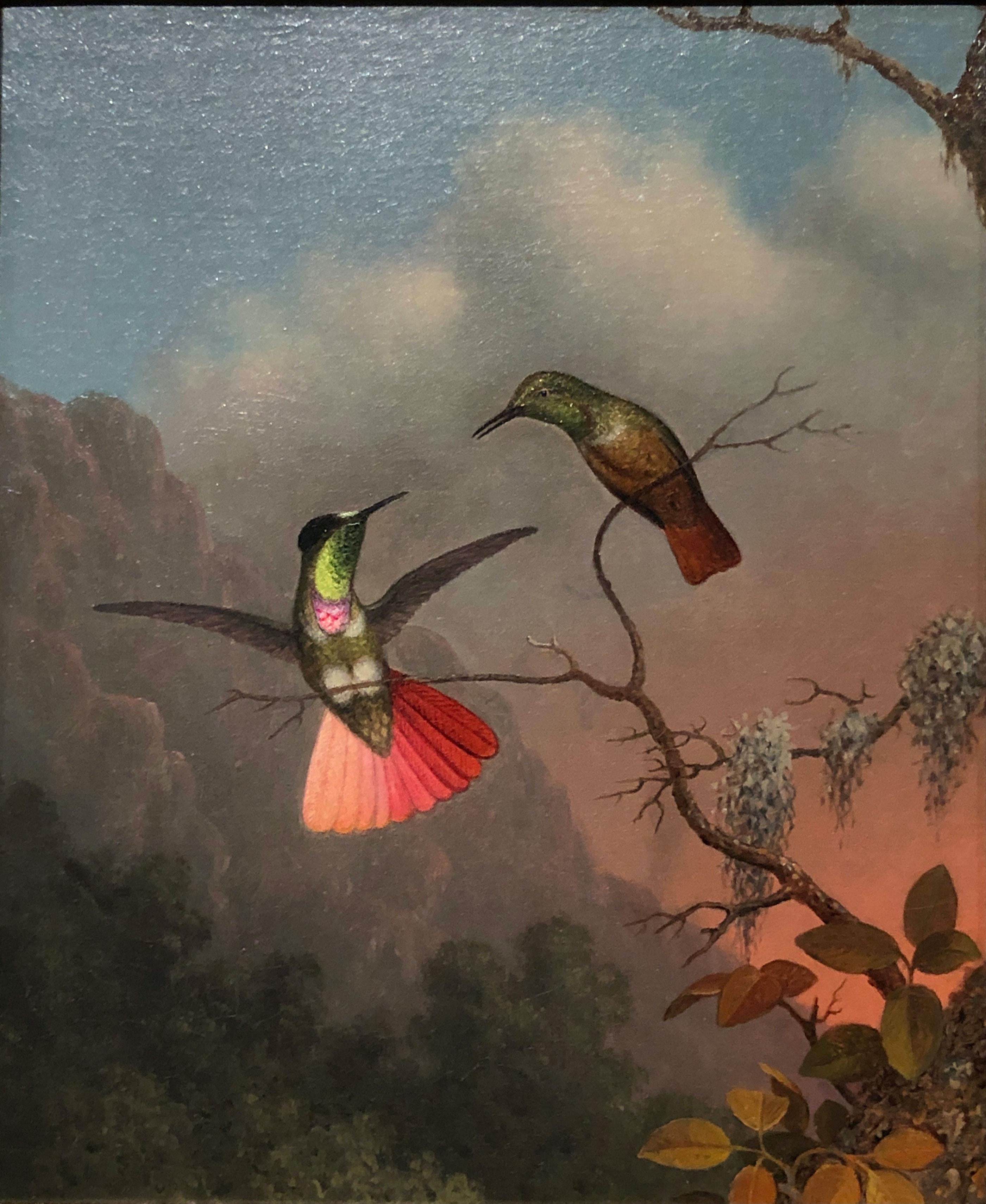 Martin Johnson Heade, <em>Hooded Visorbearer</em>, c. 1863–64, from <em>The Gems of Brazil</em>. Oil on canvas, 12 1/4 x 10 inches. Crystal Bridges Museum of American Art, Bentonville, Arkansas.
