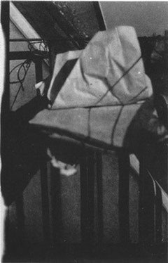"Marcel Duchamp, ""The Unhappy Readymade"" (1919). Found object (photograph, 1920)."