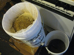 The author's personal homebrew; draining wort from the mash.